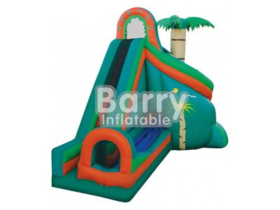 Guangzhou Jungle Commercial Grade Inflatable Water Slides With Tunnel For Sale BY-WS-007
