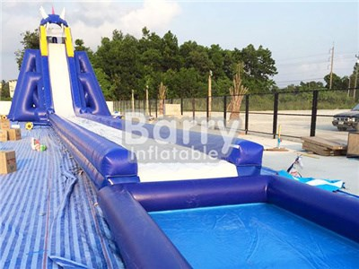 Professional Manufacturer Hippo Giant Slide , Inflatable Slide Water BY-GS-011