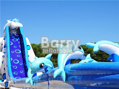 Best Price Giant Adult Size Dolphin Water Slide Manufacturer BY-GS-020