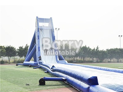 Blue Giant Inflatable Slide For Adult
